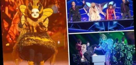 The Masked Singer UK 2020: Who is tipped to be appearing? All the latest odds
