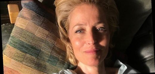 Sex Education's Gillian Anderson wows with 'post-s**g' glow pic amid s2 launch