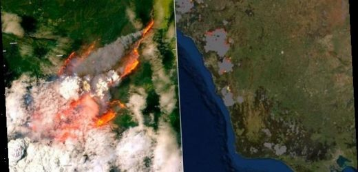 Photos from space show Australia's east coast alight