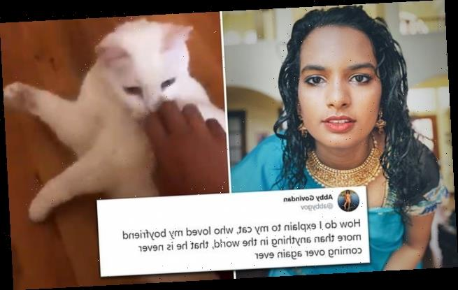 Woman asks how she should inform her cat about a breakup
