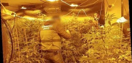 Spanish police arrest Polish drug traffickers with 'military training'