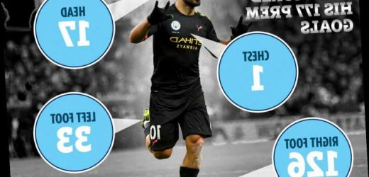 How Sergio Aguero has scored all 177 Premier League goals with Man City star an expert with his feet, head and CHEST – The Sun