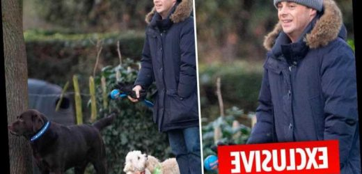 Ant McPartlin seen for the first time since agreeing to give ex Lisa £31M in divorce settlement – The Sun