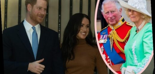 Harry & Meghan's Decision Was Sneakily Influenced By… CAMILLA?!?