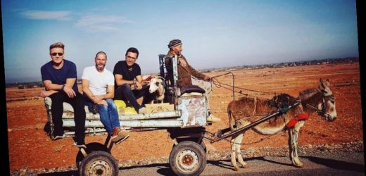 Gordon Ramsay and Gino D'Acampo slammed by animal lovers as they get tiny donkey to lug them in a cart – The Sun