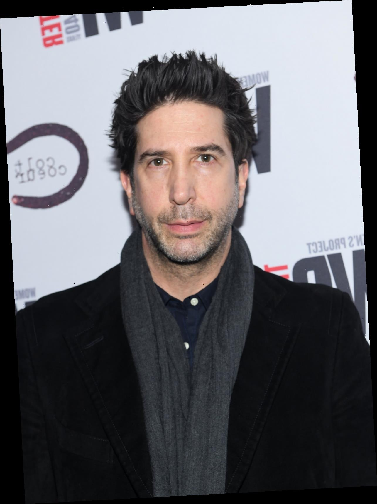 The One Where David Schwimmer Doesn't Understand 'Friends' Criticism