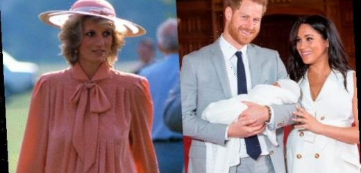 Prince Harry Wants To Protect His Wife & Son From His Mother's Tragic Fate — Expert Explains