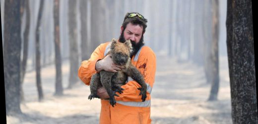 In California: Big spending plans, help for Australia's critters and that photo