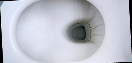 Woman rids toilet of stubborn limescale using dishwasher tablet cleaning hack
