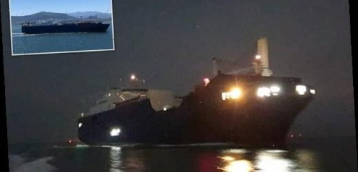 Fury as Saudi Arabian cargo ship stops at Kent port in darkness