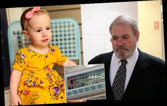 Grandfather who dropped toddler to her death from ship to plead GUILTY