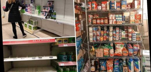 Coronavirus fears cause people to strip shelves by stocking up on supplies as one woman turns basement in 'SUPERMARKET' – The Sun