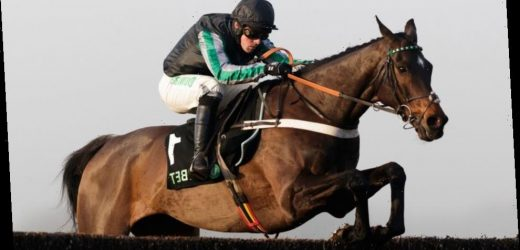 Super Saturday review: Altior back with a bang, Native River toughs it out and Pic D'orhy springs Betfair Hurdle shock