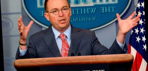 Mick Mulvaney: Media is using coronavirus coverage to 'take down' Trump