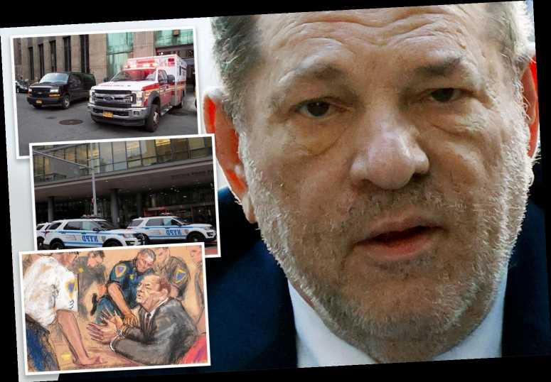 Harvey Weinstein in good spirits and 'looking forward' to visitors in hospital after rape conviction, lawyer says – The Sun