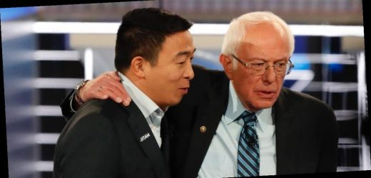 Bernie Sanders stands to benefit most from Andrew Yang dropping out, with 69% of the businessman's supporters also liking the senator