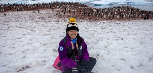 Antarctica: Penguin lover's trip of a lifetime