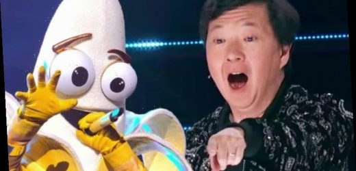 The Masked Singer on FOX: Fans distracted from Banana as Astronaut appears in blunder