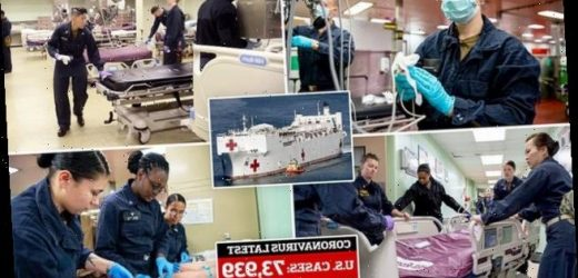 US Navy's 'Mercy' ship prepares 1000 beds for non-coronavirus patients