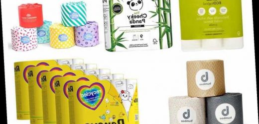 6 Best Recycled Toilet Paper 2020 | The Sun UK