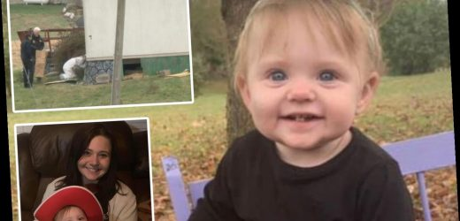 Body found in search for missing Evelyn Mae Boswell 'had identical clothing to what toddler wore when she was last seen' – The Sun