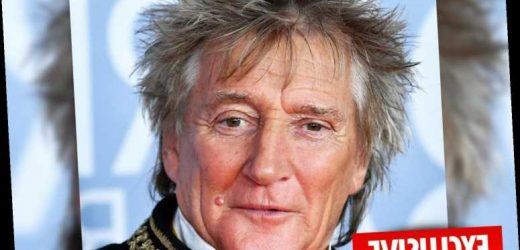 Rod Stewart claims the guard he punched during a New Year's party touched him first – The Sun