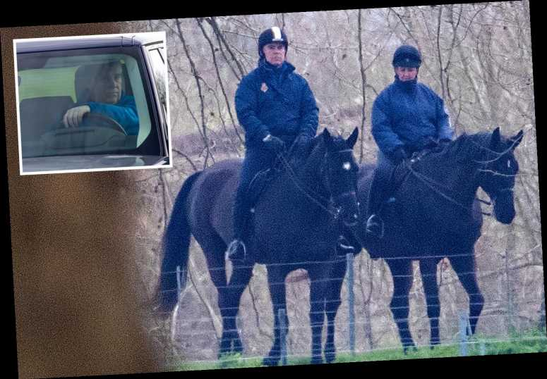 Prince Andrew takes an early morning horse ride through the Royal Park at Windsor Castle – The Sun