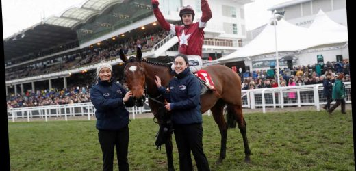 Cheltenham Tips: All you need for the Cross Country Chase at Cheltenham on Wednesday with Tiger Roll hot favourite