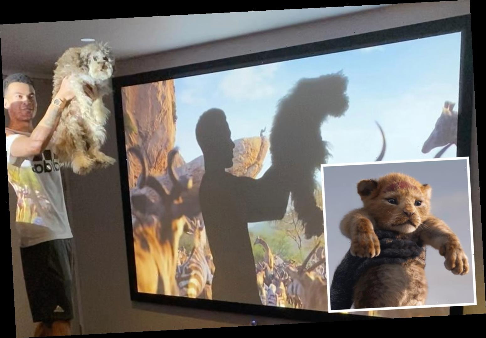 Dele Alli posts hilarious Lion King impression with dog Uno as Tottenham star shows off giant projector TV at his house – The Sun