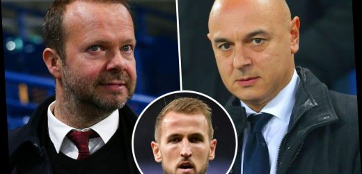 Ed Woodward 'relishing' going head-to-head with Levy over Harry Kane transfer as Man Utd eye deal for Spurs striker – The Sun