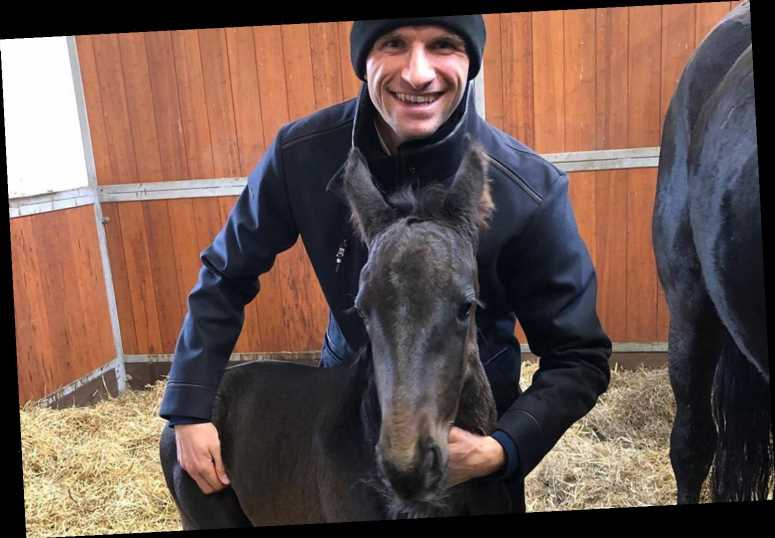 Thomas Muller welcomes baby foal called Gameday as Bayern Munich star's horse stable continues to grow – The Sun