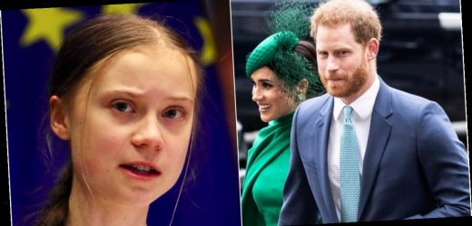Prince Harry was prank-called by 2 YouTubers pretending to be Greta Thunberg, and they got him to open up about 'Megxit,' Trump, and Prince Andrew