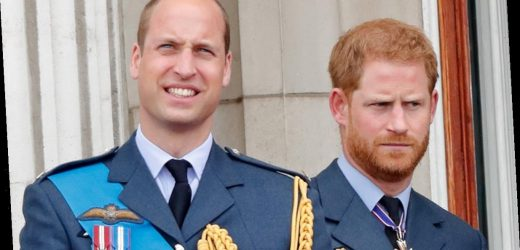 Prince Harry and Prince William's Relationship Is Reportedly 'Worse Than Ever'