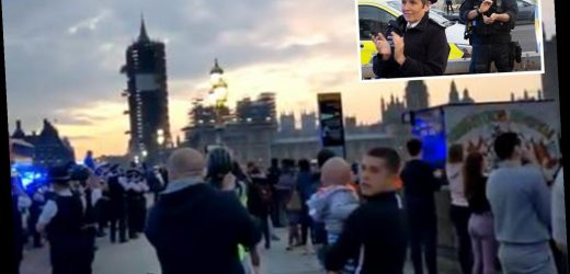 Met Police chief Cressida Dick slammed for joining Clap for Carers on Westminster Bridge as crowds ignored two-metre rule