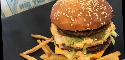 McDonald's mad mum shows how to make a Big Mac and fries in quarantine – and it 'looks better than the real deal'