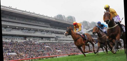 Sha Tin tips: Preview and best bets for the Sunday morning racing in Hong Kong – The Sun