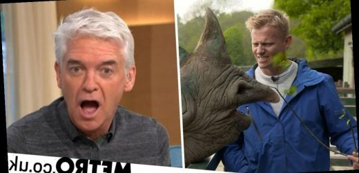 Phillip Schofield gets frustrated as rhinos are 'teased' with food