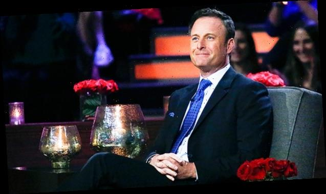 Chris Harrison Admits He'd Love Hannah Brown & Tyler Cameron Together: 'They Would Be Great'