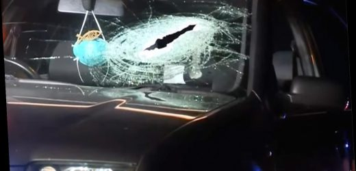 Calif. Grandmother Killed in Car When Brick Smashes Through Window, and Cops Think Someone Threw It
