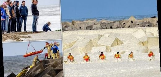 Rescue team search for surfer after four others drown in Holland