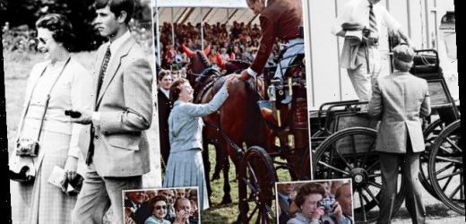 Unseen images from Royal Windsor Horse Show