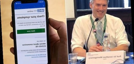 NHS coronavirus app risks sidelining millions of Brits without a phone