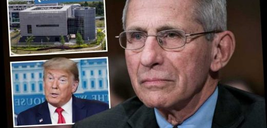 Dr Fauci insists there's 'NO evidence' coronavirus was made in lab and refutes Trump's claim it will 'just disappear' – The Sun