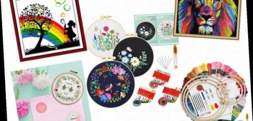 6 Best Cross Stitch Kits For Adults 2020 | The Sun UK