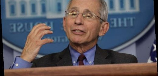 Anthony Fauci Warns of 'Suffering and Death That Could Be Avoided' If States Reopen Too Early