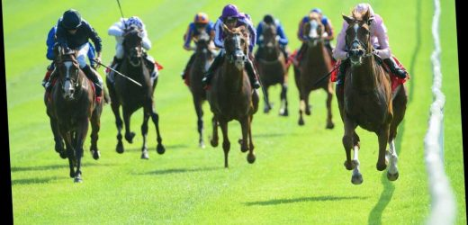 Confusion ends in Ireland as HRI confirm racing will restart behind closed doors from June 8 with strict protocols