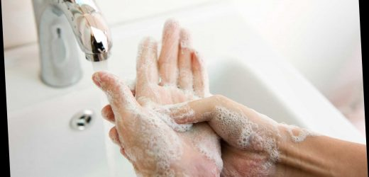 Washing your hands 6 times a day 'slashes risk of coronavirus by THIRD' – The Sun