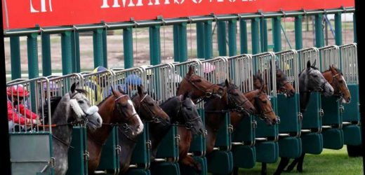 French racing suffers another setback as government rules no more racing in red-zone Paris and North-East