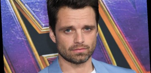Sebastian Stan References Marvel's Bucky Barnes While Encouraging Fans to Stay Safe