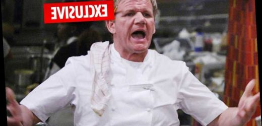 Multi-millionaire Gordon Ramsay forced to take out loans of up to £80 million to secure future of restaurant empire – The Sun